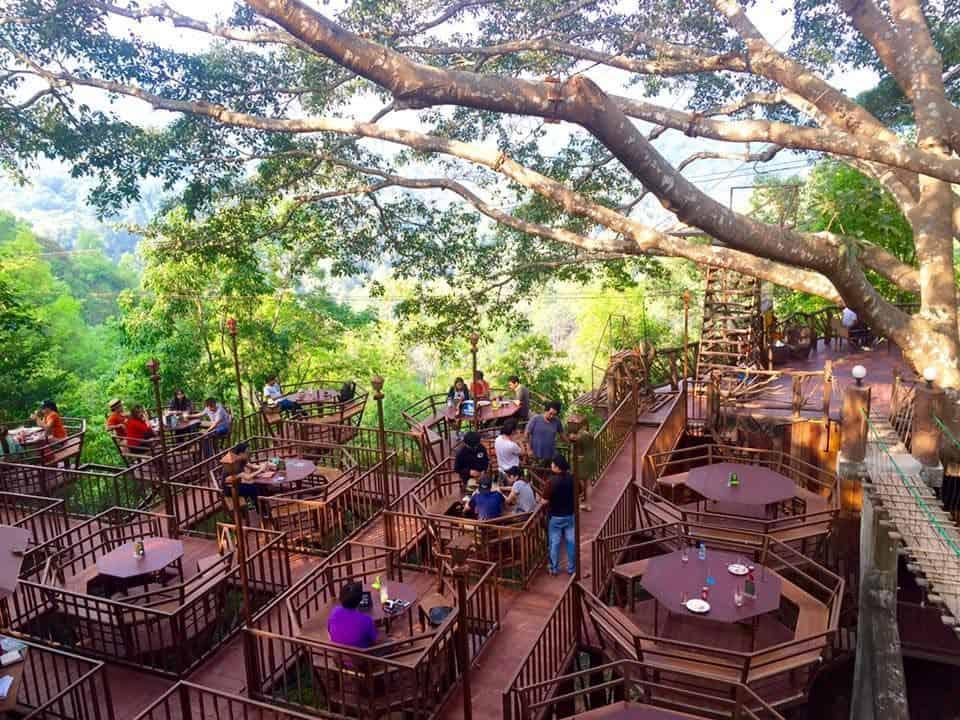 The Giant Chiang Mai ấn tượng thu hút du khách