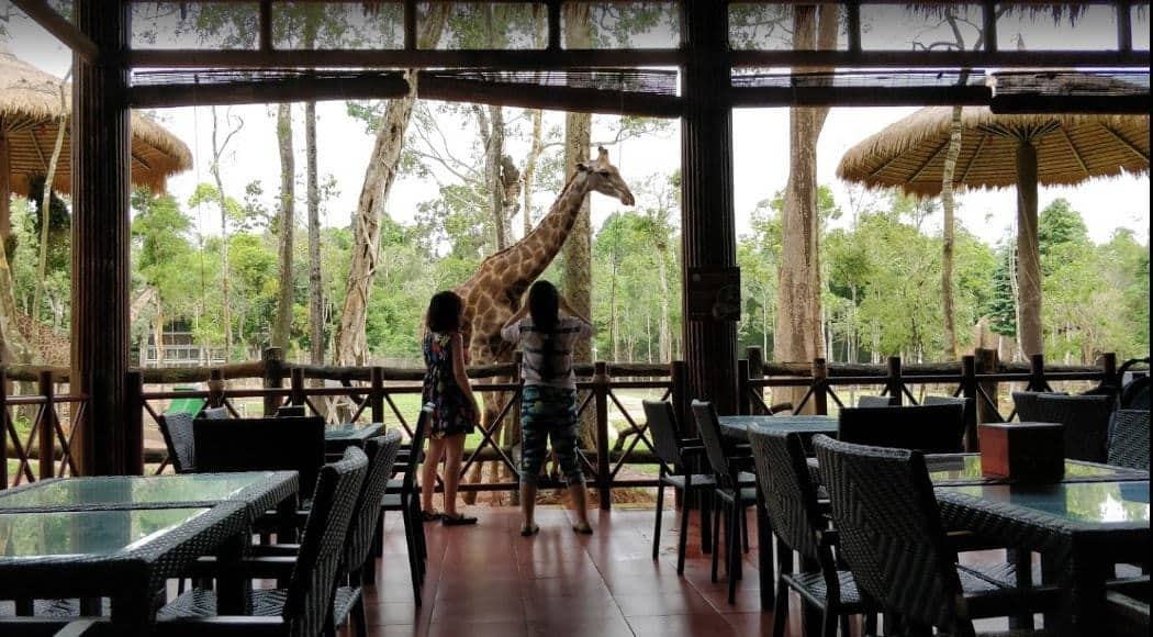 Đặc trưng quán Giraffe