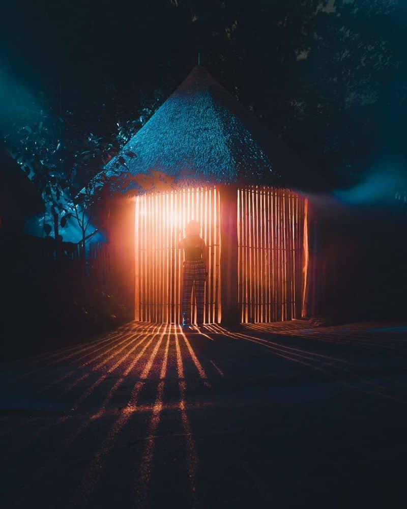 Rainforest-Lumina