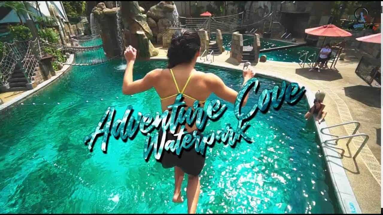 Giá vé công viên nước Adventure Cove Waterpark