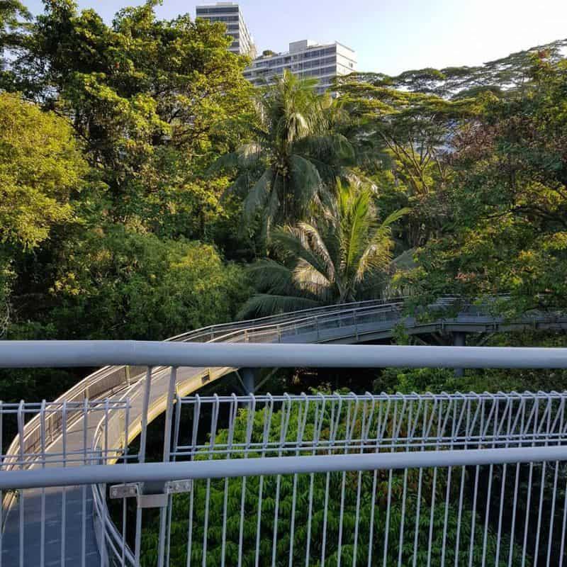 cong-vien-singapore