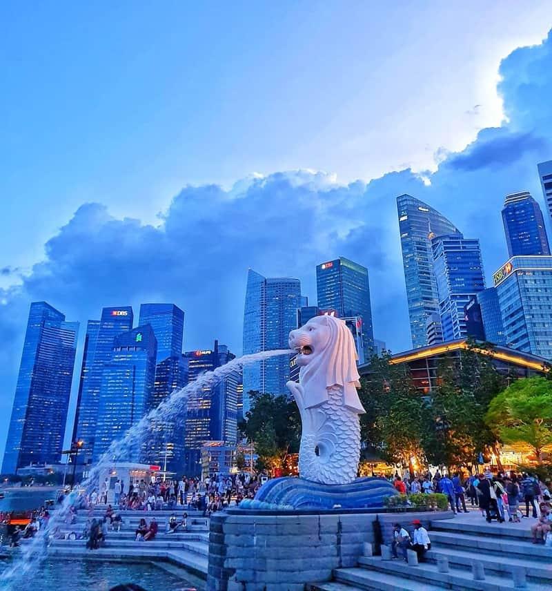 công viên sư tử biển Merlion Park ở Singapore
