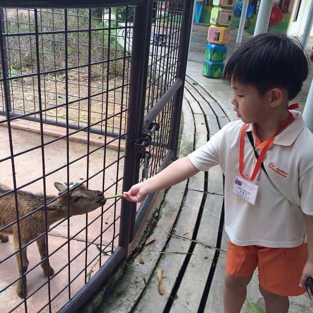 kinh nghiệm du lịch singapore cho gia đình