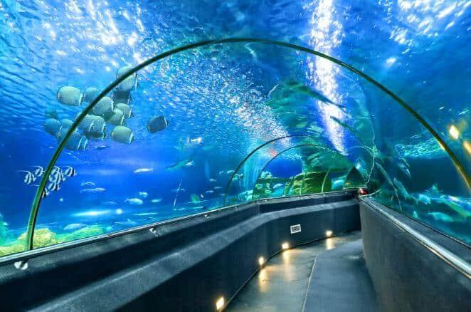 kinh nghiệm du lịch Vinpearl Land Phú Quốc