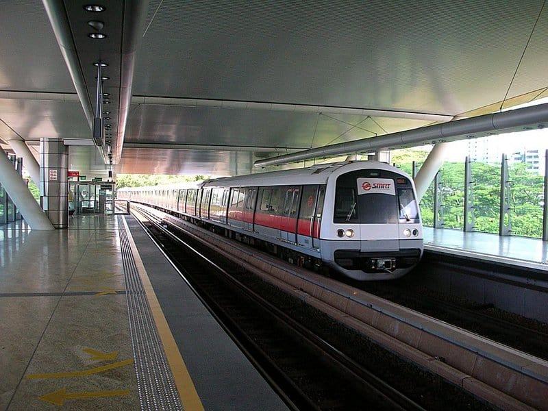 singapore-zoo-3