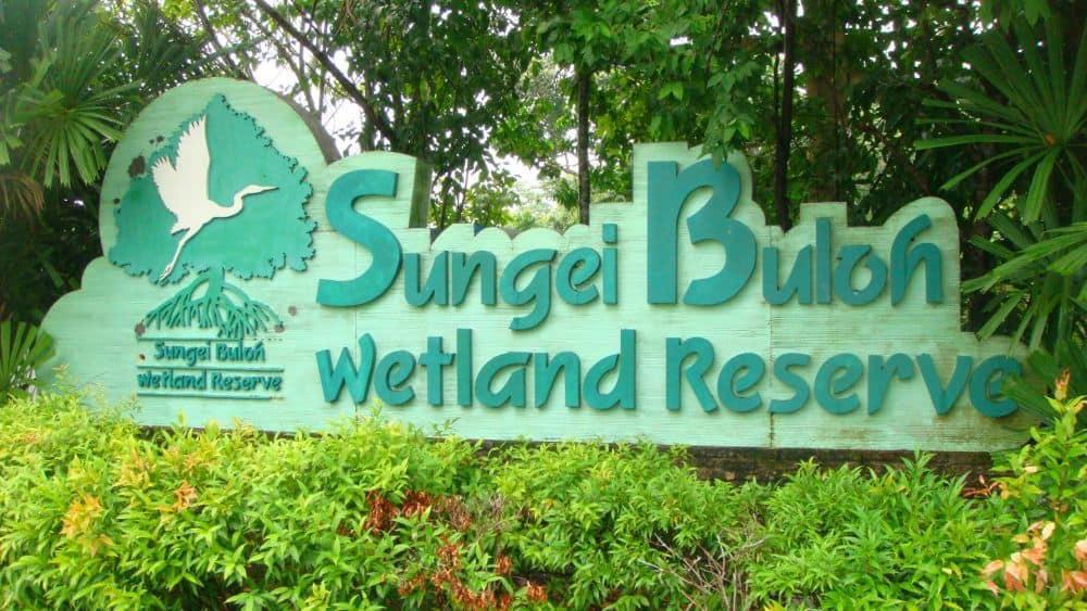 sungei-buloh-wetland-reserve