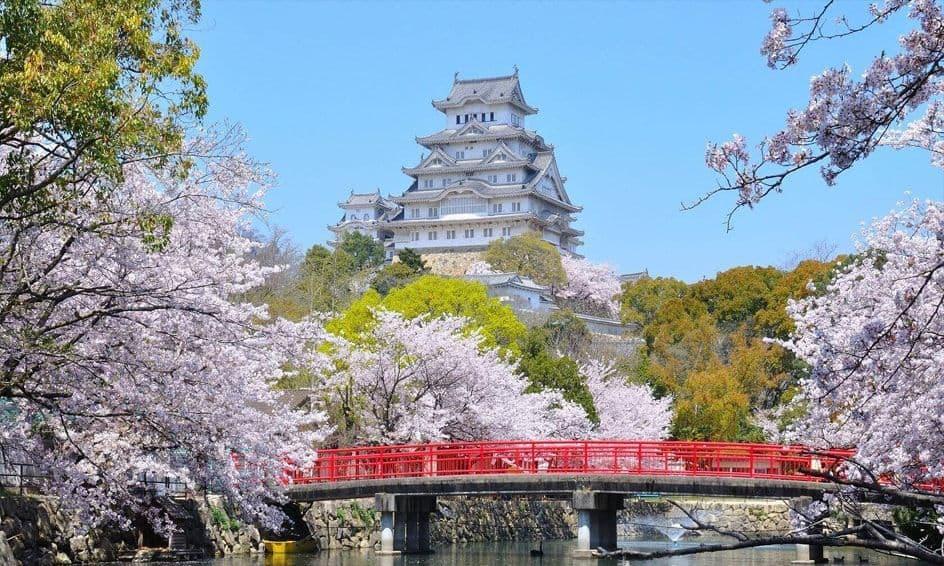 Khung cảnh phía trước hoàng cung Tokyo