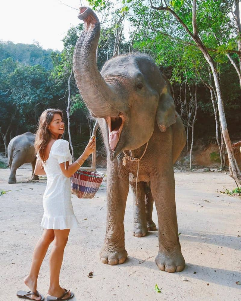 Du Lịch Chiang Mai Tự Túc