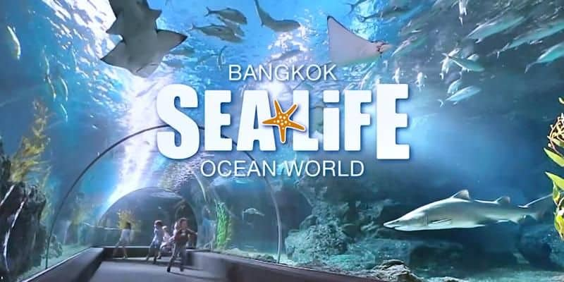 Thủy cung Sea Life Bangkok