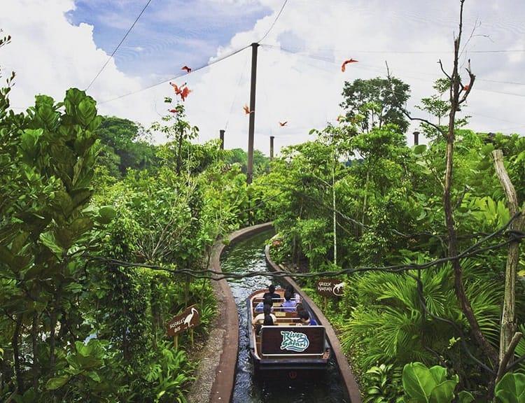Lênh đênh trên nước ngắm nhìn River Safari