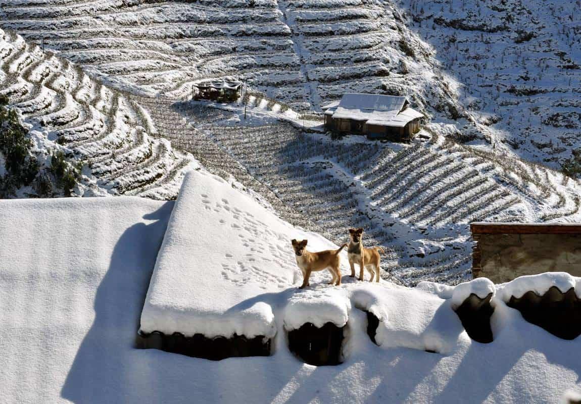sapa thường có tuyết vào tháng mấy