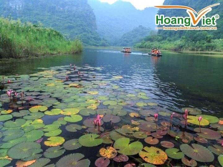 Tour du lịch Hoa Lư