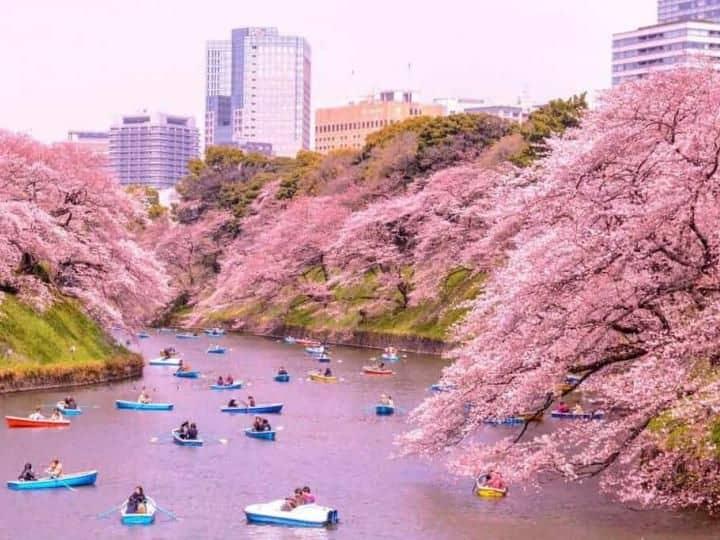 Tour Tokyo – Núi Phú Sỹ - Nagoya – Kyoto – Osaka