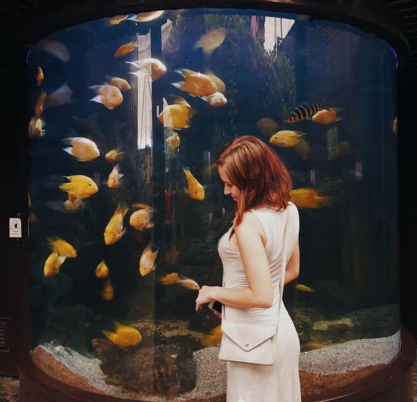under-water-pattaya