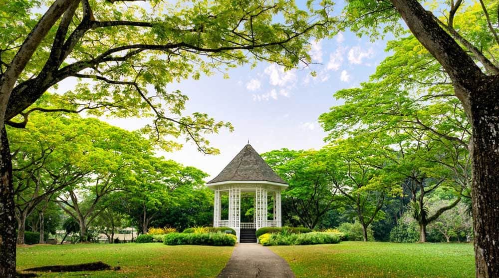Vườn bách thảo Singapore