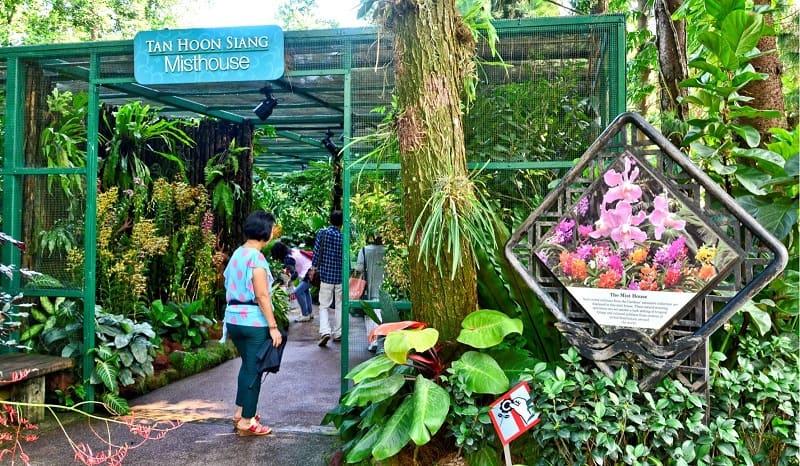 vườn lan Singapore