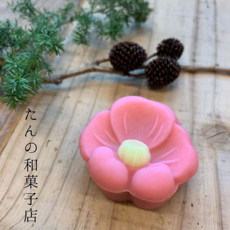 Bánh wagashi rất thơm ngon, bày trí vô cùng đẹp mắt, nghệ thuật.