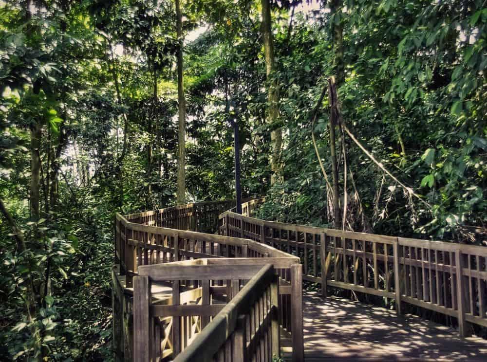 Bukit Timah ở Singapore