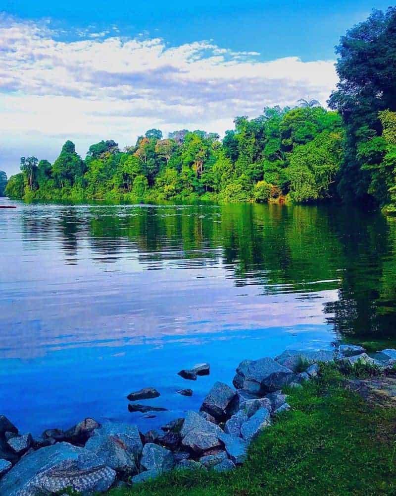 Công viên MacRitchie Reservoir
