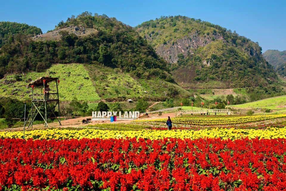 Vườn hoa Happy Land Mộc Châu