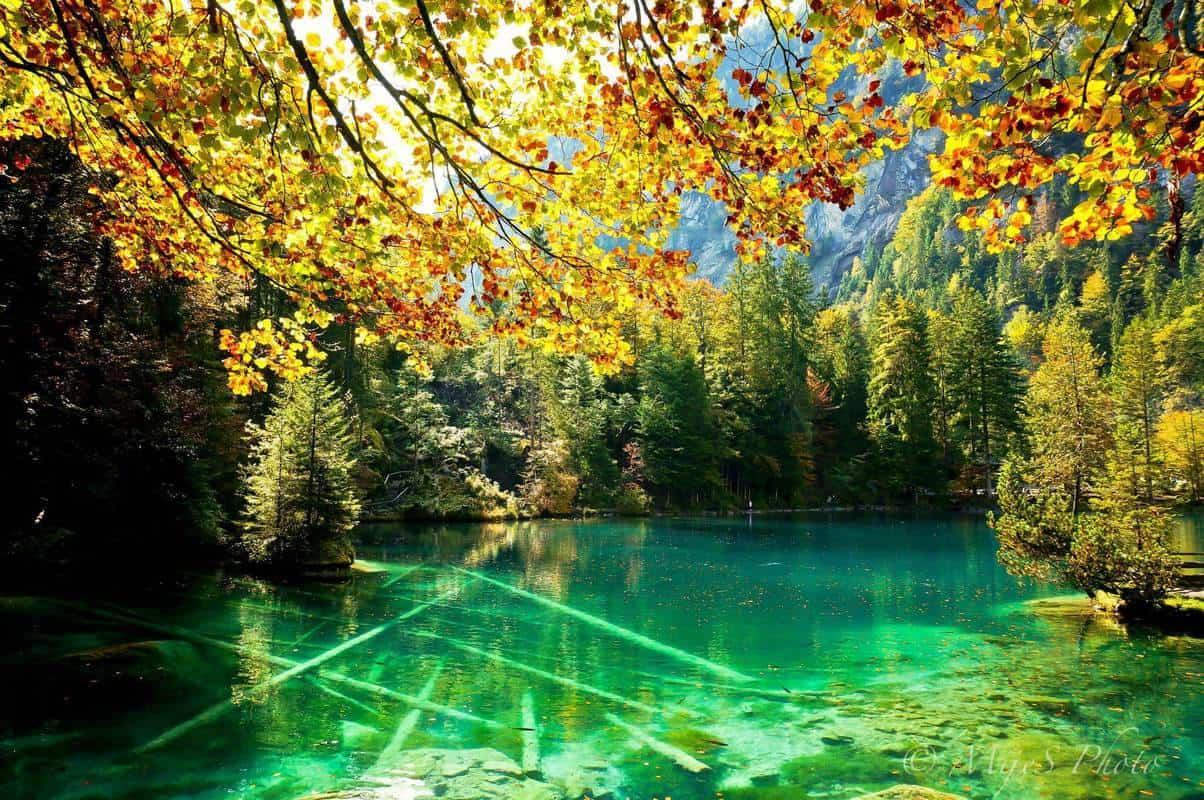 Hồ Blausee
