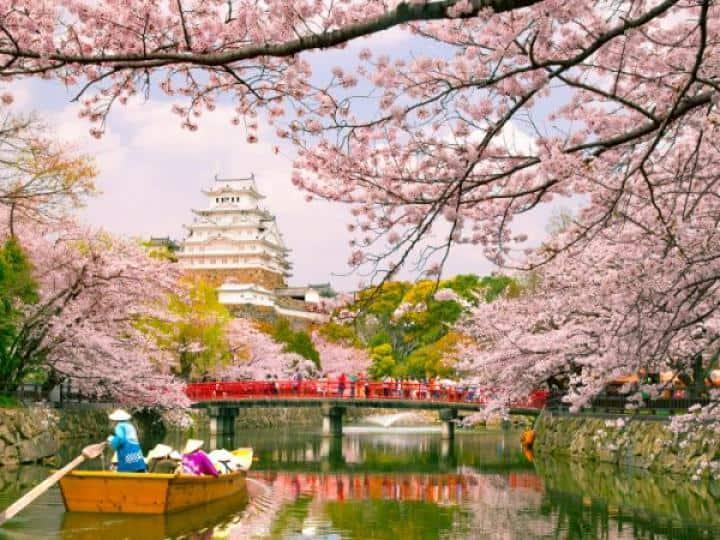 Đặt tour đi Nhật qua mạng