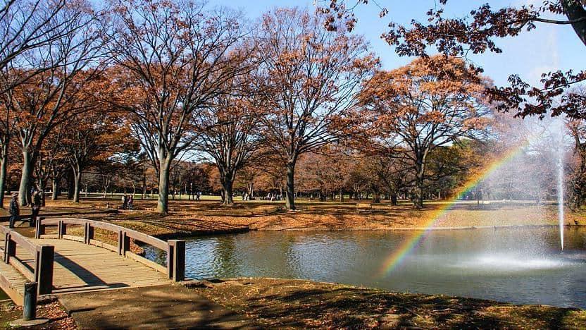 Công viên ở Nhật Bản đẹp