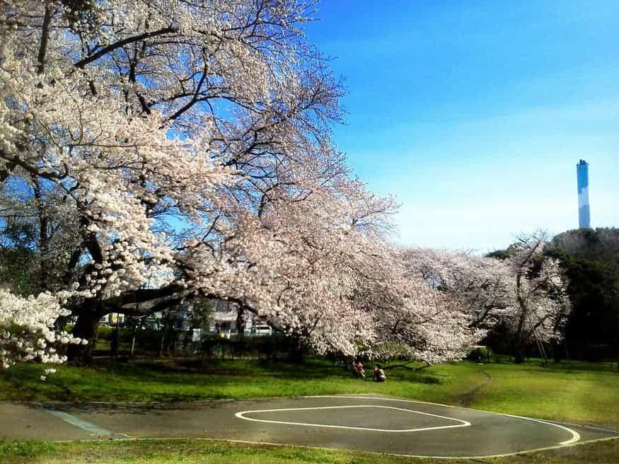 công viên ở Nhật Bản