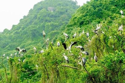 Ninh Bình có những địa điểm du lịch nào