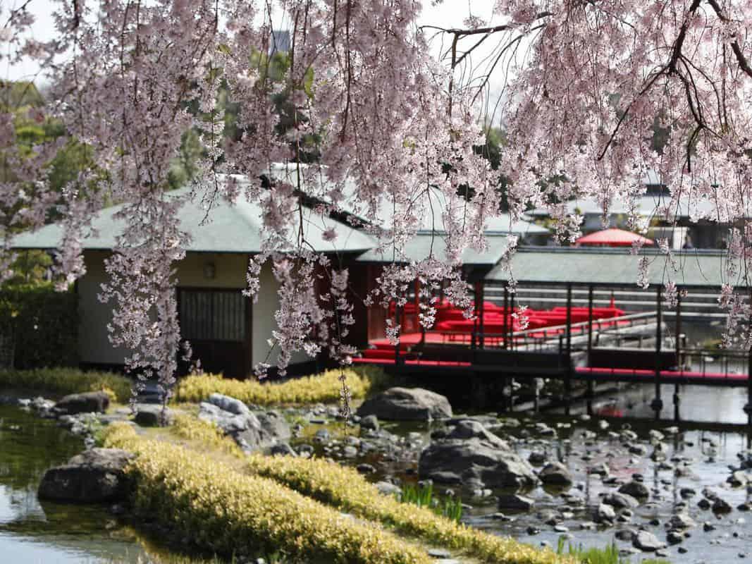 địa điểm du lịch gần nagoya