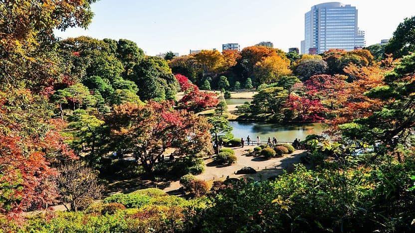 địa điểm du lịch nhật bản mùa thu