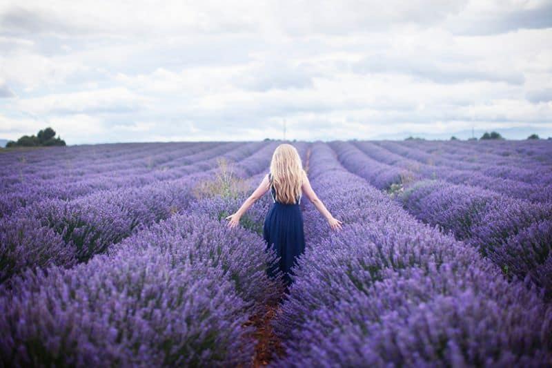 Provence Pháp thu hút du khách tứ phương