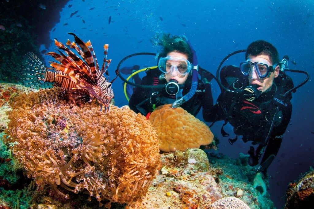 hoạt động dưới biển