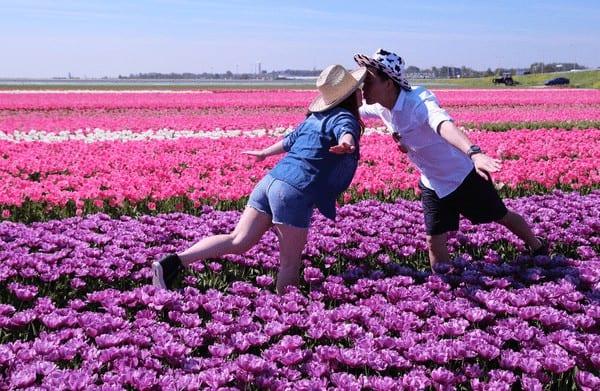 Ngắm hoa tulip ở Noordwijkerhout