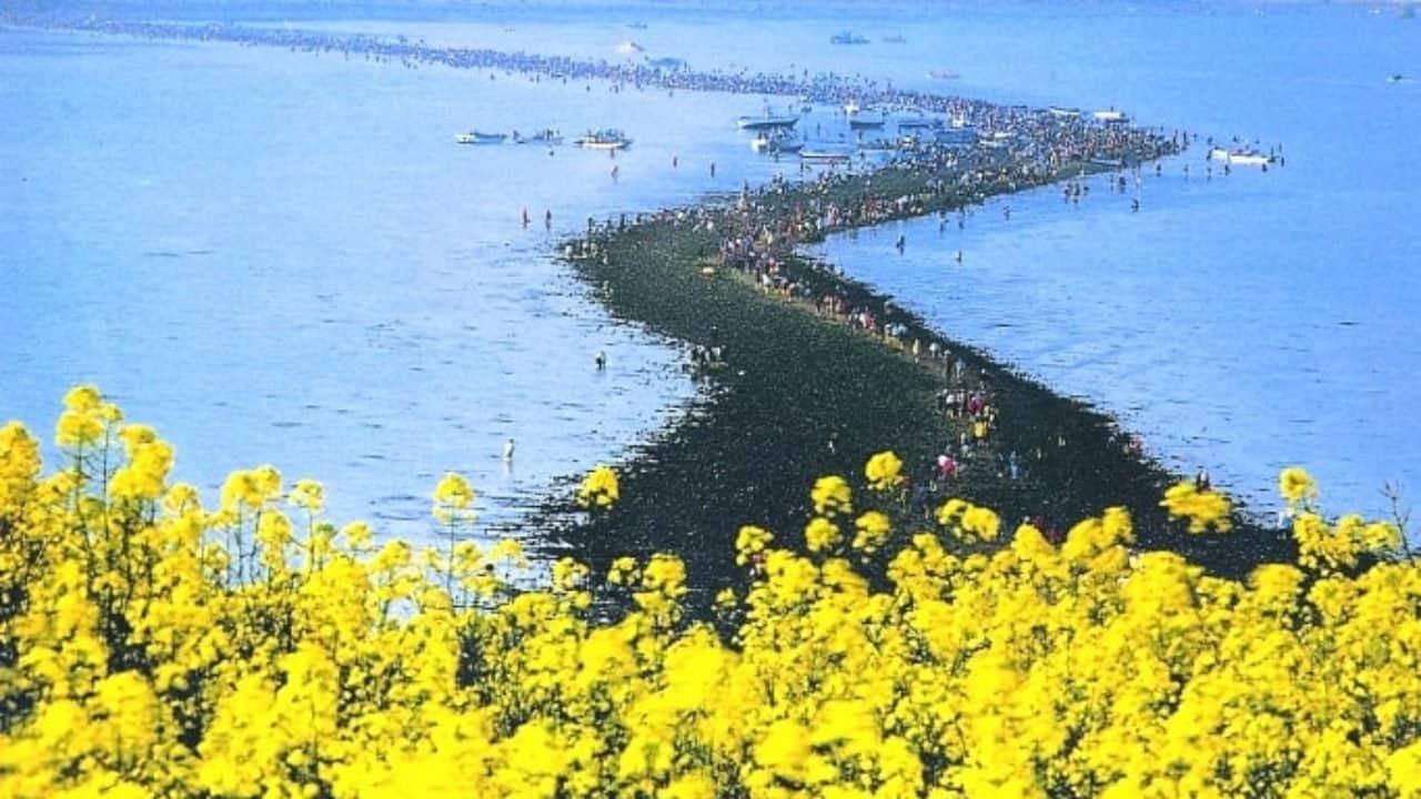 Con đường biển kỳ diệu tại đảo Jindo