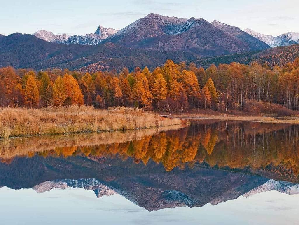 Vùng Siberia