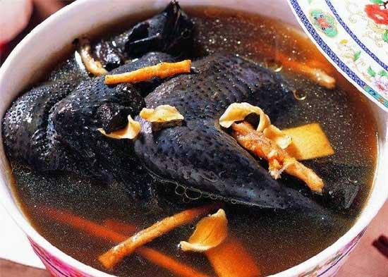 Món gà đen hầm thuốc bắc bổ dưỡng