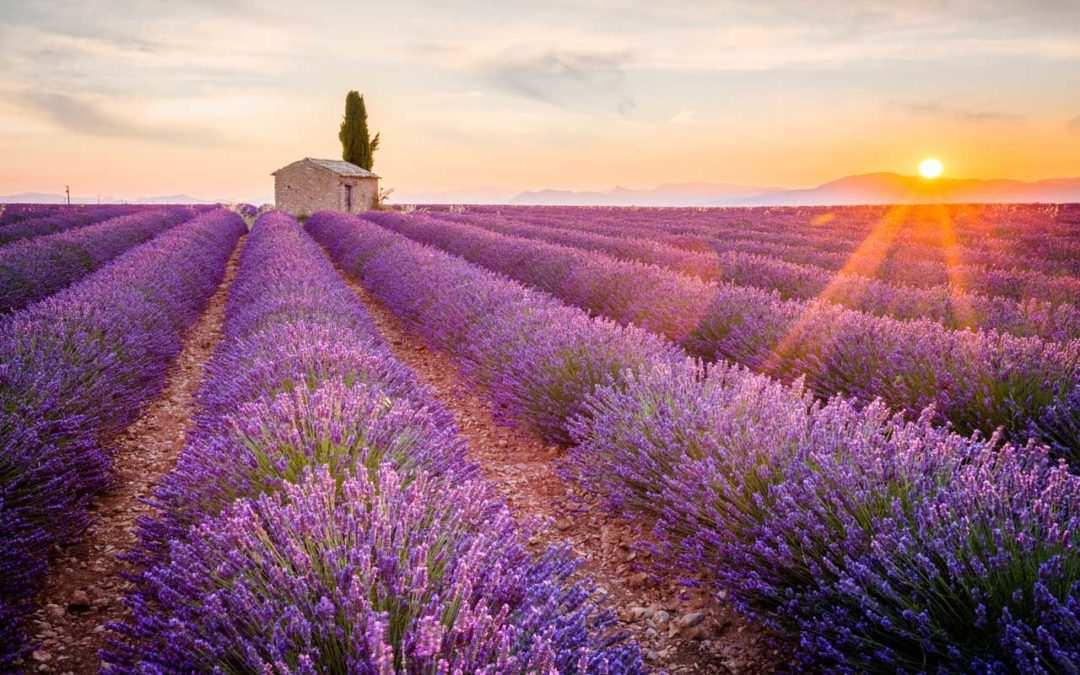 Đi đâu tại miền Nam nước Pháp?