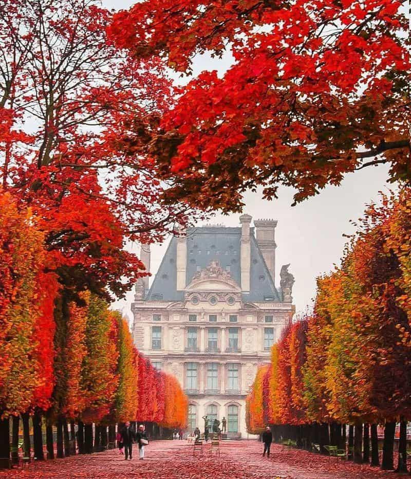Mùa thu của nước Pháp