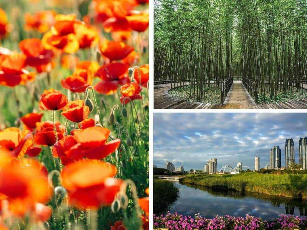 những địa điểm du lịch nổi tiếng ở hàn quốc