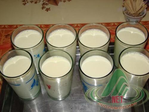Sữa bò non