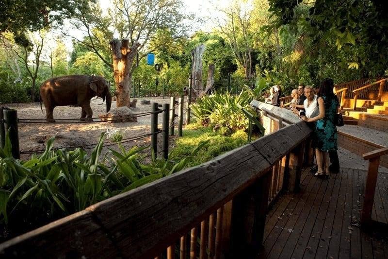 Vườn bách thú Perth