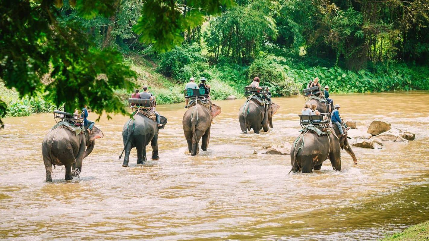 Tour bangkok pattaya