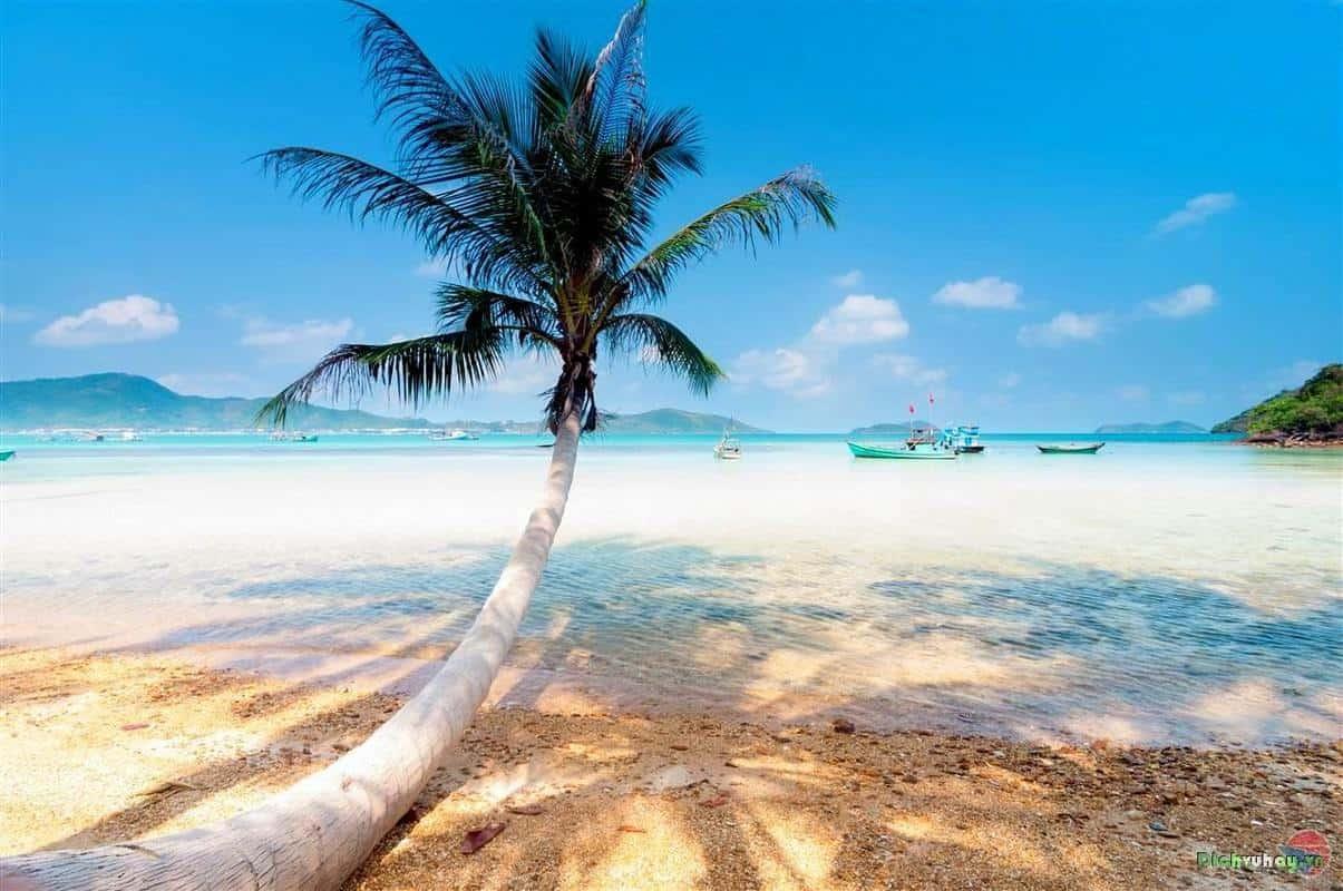 tour du lịch đảo nam du phú quốc