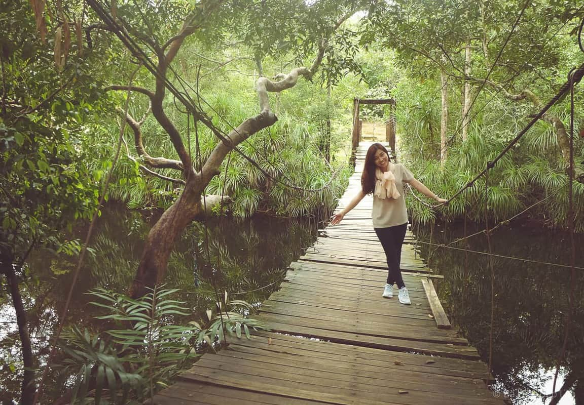 Cây cầu dây dẫn vào suối Đá