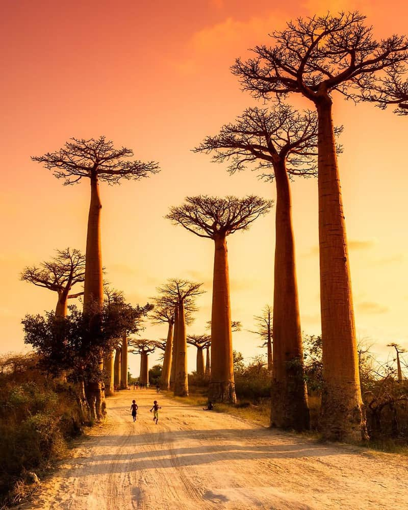 Địa điểm du lịch tại Châu Phi