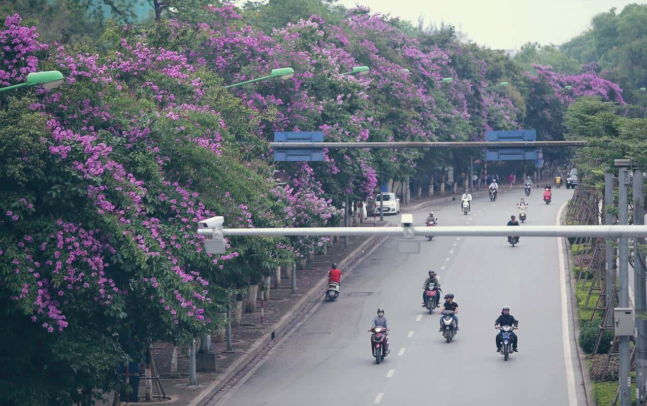 Đi du lịch Hà Nội