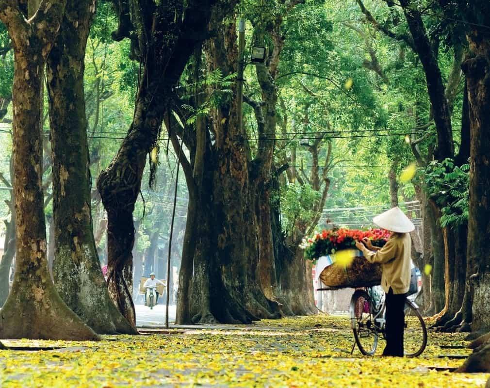 Đi du lịch ở Hà Nội