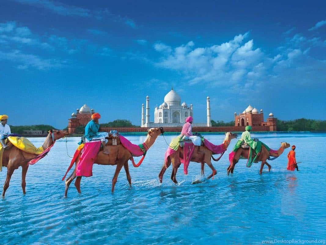 Du lịch Ấn Độ kinh nghiệm
