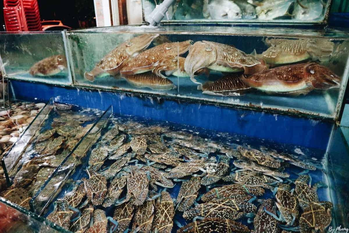 quán hải sản bờ kè nha trang